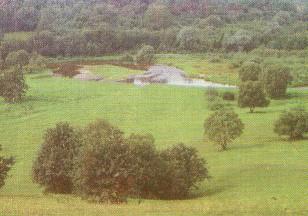 Dubysa nuo Birutės kalno Gėluvoje. 1977 metai. Iš K.Smilgevičienės ir K.Trečiakausko knygos Raseiniai.